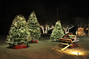 Norwell's Christmas Lights on the Common