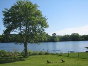 Jacobs Pond Norwell MA