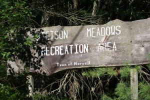 Stetson meadows Norwell MA