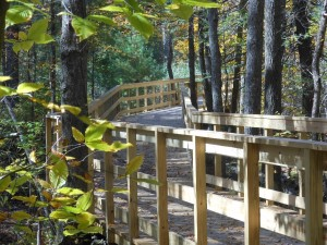 Norwell MA pathways boardwalk